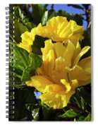 Sun-drenched Yellow Hibiscus Spiral Notebook