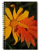 Sun Flower And Leaf Spiral Notebook