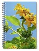 Sun Flower Artwork Sunflower 5 Giclee Art Prints Baslee Troutman Spiral Notebook