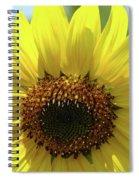 Sun Flower Glow Art Print Summer Sunflowers Baslee Troutman Spiral Notebook