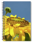 Sun Flowers Summer Sunny Day 8 Blue Skies Giclee Art Prints Baslee Troutman Spiral Notebook