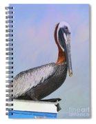 Sun Glow Pelican Spiral Notebook