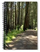 Sun In The Forest. Spiral Notebook