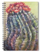 Sun Kissed Barrel Cactus Spiral Notebook