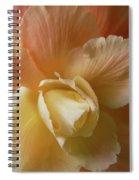 Sun Kissed Begonia Flower Spiral Notebook