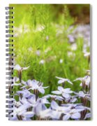 Sun-kissed Meadows With White Star Flowers Spiral Notebook