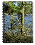 Sun Of The Loch Afternoon. Spiral Notebook