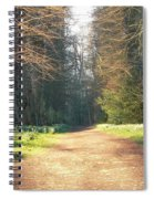 Sun On The Avenue Spiral Notebook