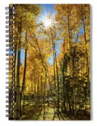 Sun Peaking Through The Aspens  Spiral Notebook