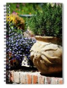 Sun Pot Spiral Notebook
