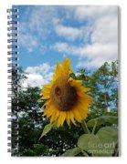 Sun Power Spiral Notebook