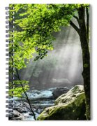Sun Rays On Williams River  Spiral Notebook