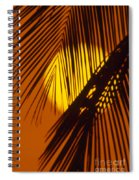 Sun Shining Through Palms Spiral Notebook