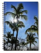 Sun Through Smathers Beach Palms Spiral Notebook