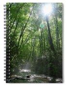 Sun Through The Trees Spiral Notebook