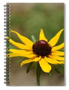 Sun Worshiper Spiral Notebook