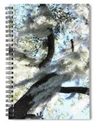 Sun Worshipper Spiral Notebook