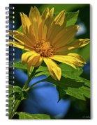 Sun Yellow Spiral Notebook