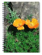 Sunbathers Spiral Notebook