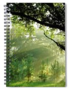 Sunbeams In The Forest Spiral Notebook