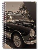 Sunbeams On A Sunbeam Spiral Notebook