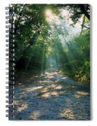 Sunbeams Through Trees Spiral Notebook