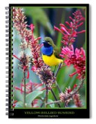 Sunbird Spiral Notebook
