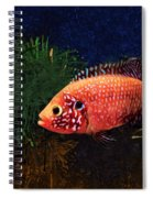 Sunburst Peacock Cichlid  Spiral Notebook