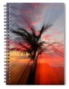 Sunburst Through Palm Tree Spiral Notebook