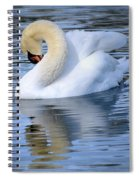 Sunday At The Lake Spiral Notebook