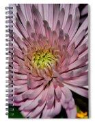 Sunday Delight Spiral Notebook