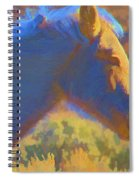 Sunday Morning At The Red Willows Spiral Notebook