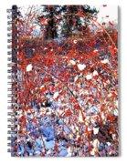 Sundrenched Rosehips Spiral Notebook