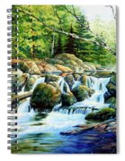 Sunfish Creek Spiral Notebook