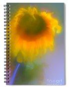 Sunflower # 5. Spiral Notebook