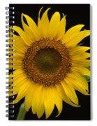 Sunflower 1 Spiral Notebook