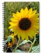 Sunflower 12 Spiral Notebook