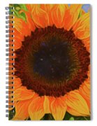 Sunflower 12118-3 Spiral Notebook