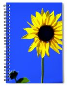 Sunflower 2 Spiral Notebook