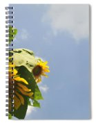 Sunflower 3 Spiral Notebook