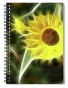 Sunflower-5030-fractal Spiral Notebook