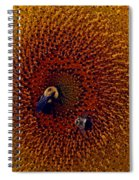 Sunflower And Bees Spiral Notebook