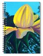 Sunflower And Spider Spiral Notebook