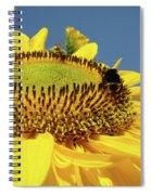 Sunflower Art Prints Honey Bee Sun Flower Floral Garden Spiral Notebook