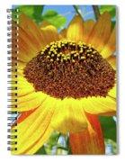 Sunflower Art Prints Sun Flowers Gilcee Prints Baslee Troutman Spiral Notebook