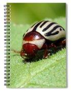 Sunflower Beetle Spiral Notebook