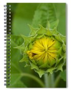 Sunflower Bud Spiral Notebook