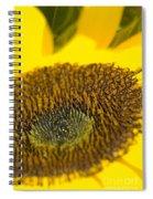 Sunflower Close-up Spiral Notebook