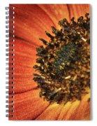 Sunflower Dance Spiral Notebook