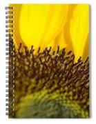 Sunflower Detail Spiral Notebook